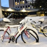 Bikes outside Social Sciences